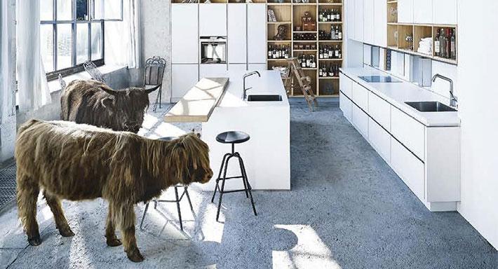 Next 125 - Chuchihuus Lausen, Küche